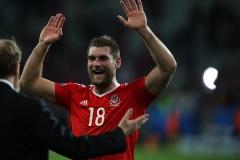 EURO2016 Wales v Belgium (18)