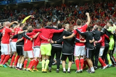 EURO2016 Wales v Belgium (19)